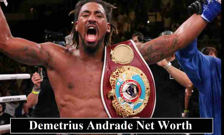 Demetrius Andrade net worth