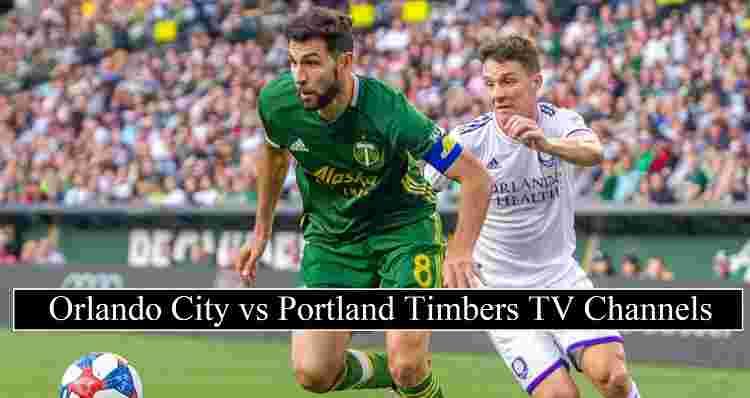 City Timbers stream